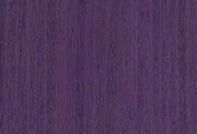 Trendy Purple T164