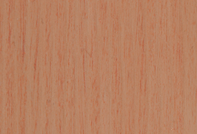 Apricot T166