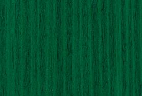 Vibrant Green T159